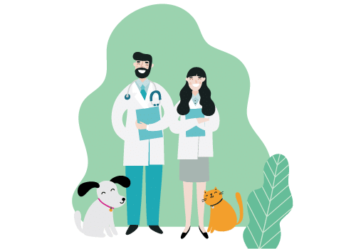 veterinary conferences