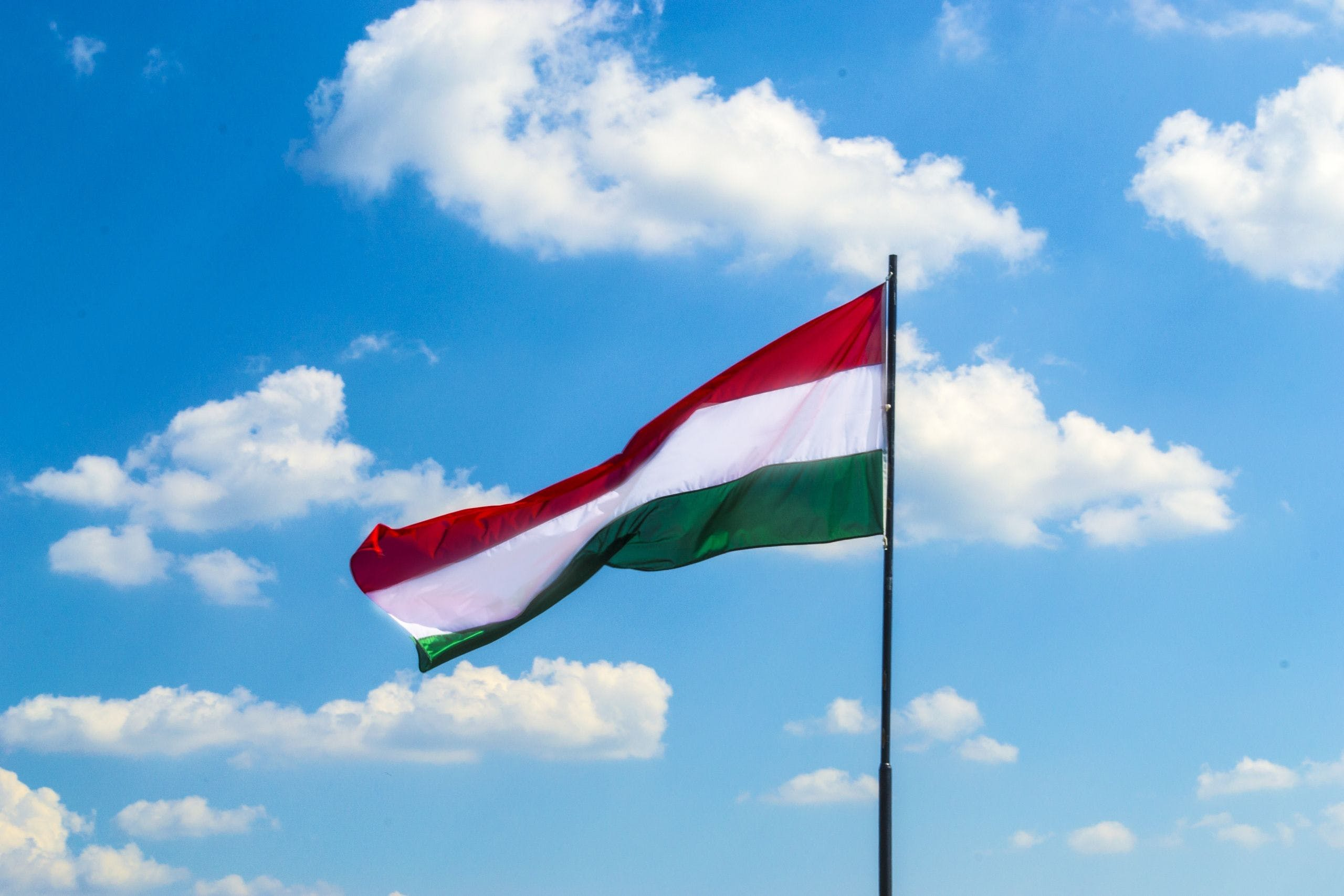 Best universities in Hungary